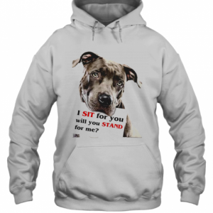 Rottweiler Dog I Sit For You Will You Stand For Me T-Shirt Unisex Hoodie